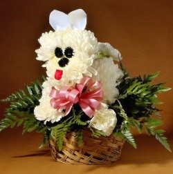 Flower Puppy Novelty Design Pdf Download