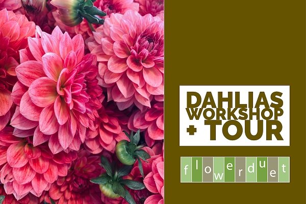 August 22, 2020 - Dahlias Workshop + TOUR