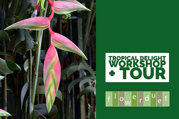 July 18, 2020 - Tropical Flowers Workshop + TOUR