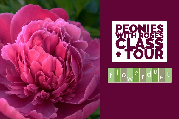 June 13, 2020 - Roses + Peonies Workshop + TOUR