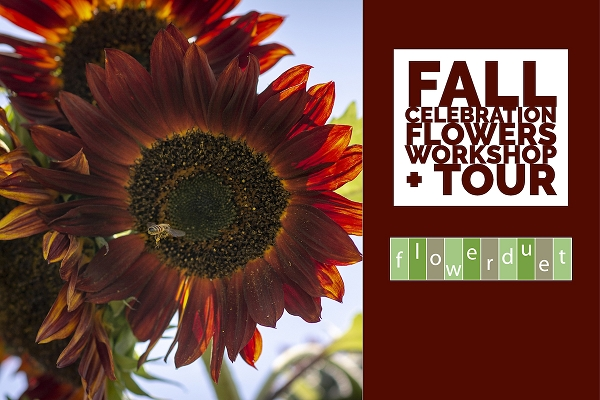 November 21, 2020 - Fall Flowers Workshop + TOUR