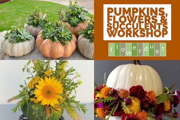October 17, 2020 - Pumpkins, Succulents + Flowers Workshop