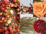 November 18, 2017 - Holiday Tablescape Thanksgiving Flowers with TOUR