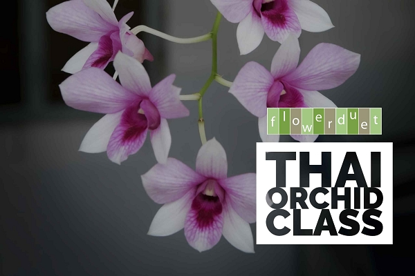 January 16, 2021 - Thailand Orchids - IN-PERSON-OR-ONLINE & INCLUDES SUPPLIES