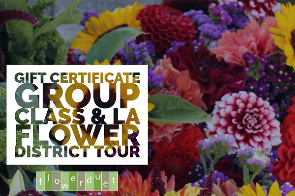 Gift Certificate - Workshop/Tour Combo